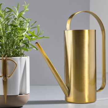 Zone-Denmark-Watering-Can-Brass-Finish-331279-.png