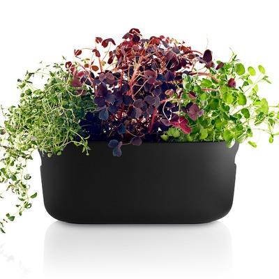 Eva-Solo-Selfwatering-herb-organiser-black.jpg
