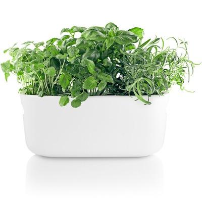 Eva-Solo-Selfwatering-herb-organiser-white.jpg