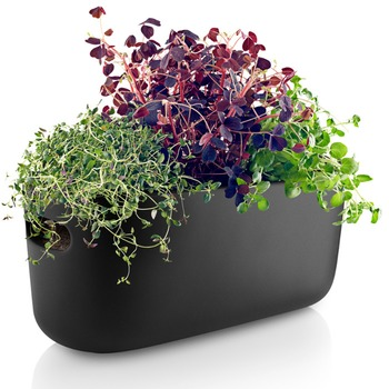 Eva-Solo-Selfwatering-herb-organiser-black-.jpg