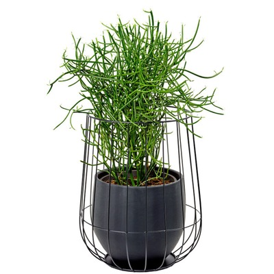 Marie-Michielssen-Serax-B7217052-pot-in-a-cage-Black-Bohero.jpg