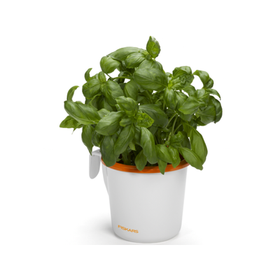 Fiskars_Herb_Pot_Large_1003654.png