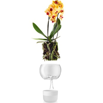 Eva_Solo_Selfwatering_orchidpot_15cm_568149_Bohero_.jpg
